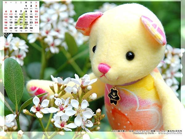 04月_1_2010春天熊