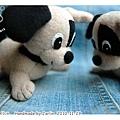 20101129_dogs06.jpg