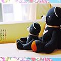 06月_1_台灣黑熊寶寶_1