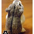 羊毛氈_小倉鼠綿綿07_felt hamster