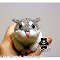 羊毛氈_小倉鼠綿綿01_felt hamster