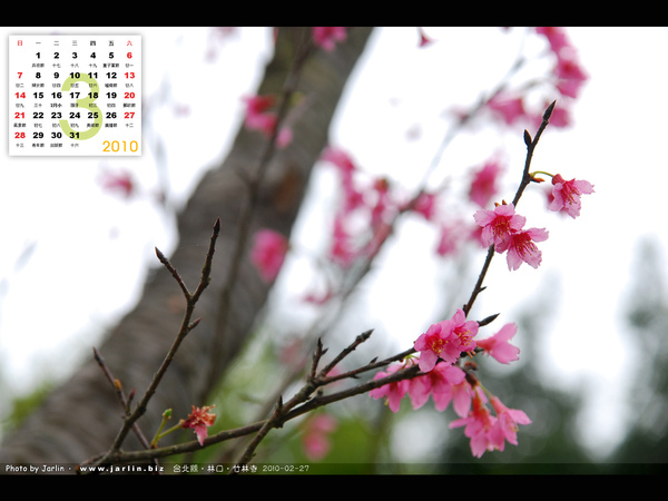 2010_03_4.jpg