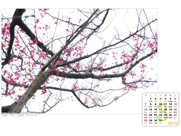 2010_03_2.jpg