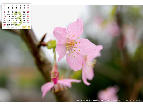 2010_03_3.jpg