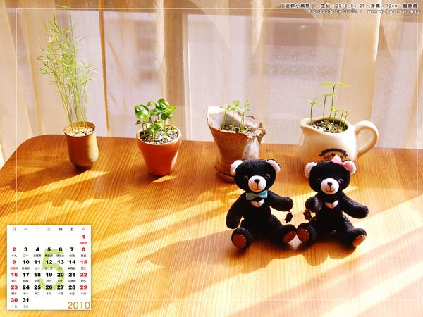 05月_1_迷你台灣小黑熊_3