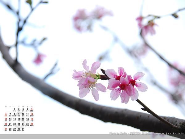 2011_3月