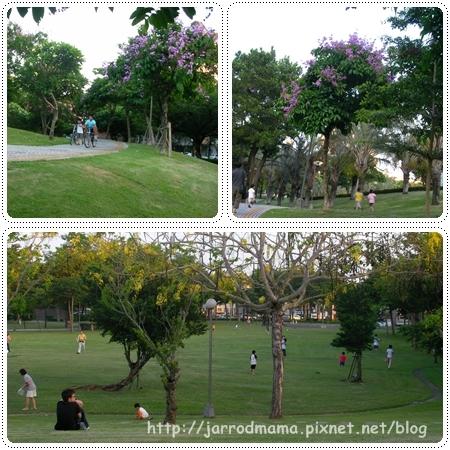 park-5.jpg