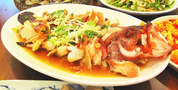 紅條麒鱗魚02.JPG