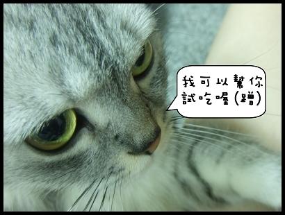 http://pics23.blog.yam.com/16/userfile/J/Jarvinia/album/14a0027421e44c.jpg