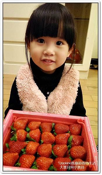 小蜜桃把草莓的風采搶走啦1