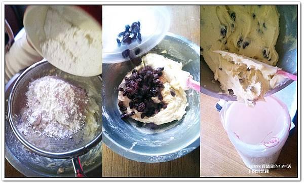 葡萄乾小園餅乾3