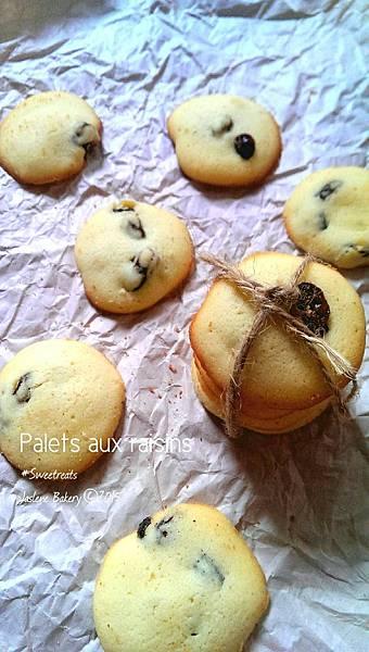 葡萄乾小園餅乾5
