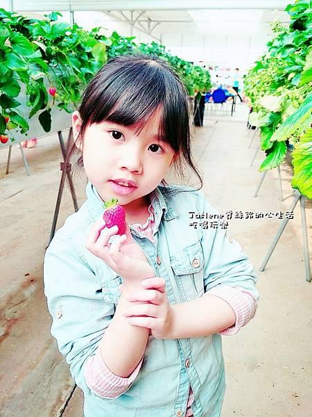 生日快樂之韓國親子自由行43