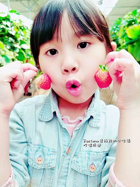 生日快樂之韓國親子自由行45