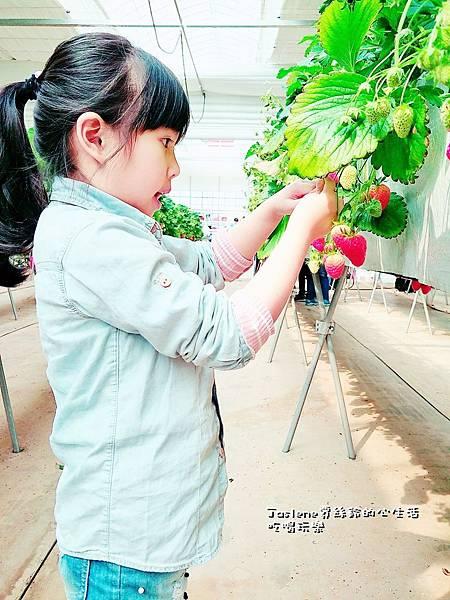 生日快樂之韓國親子自由行42