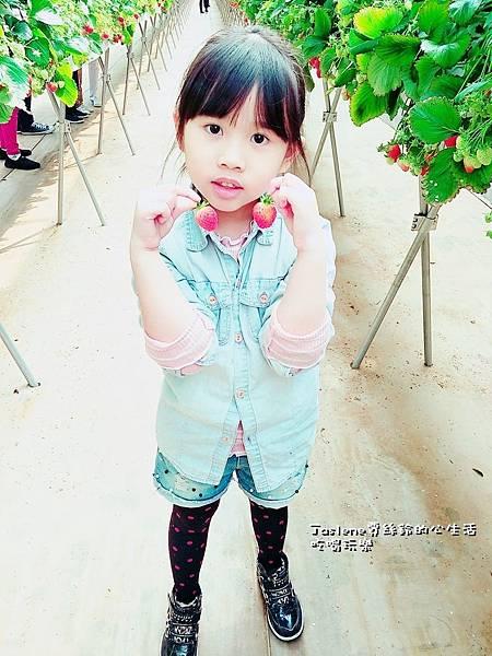 生日快樂之韓國親子自由行44