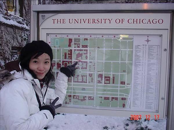 芝加哥大學