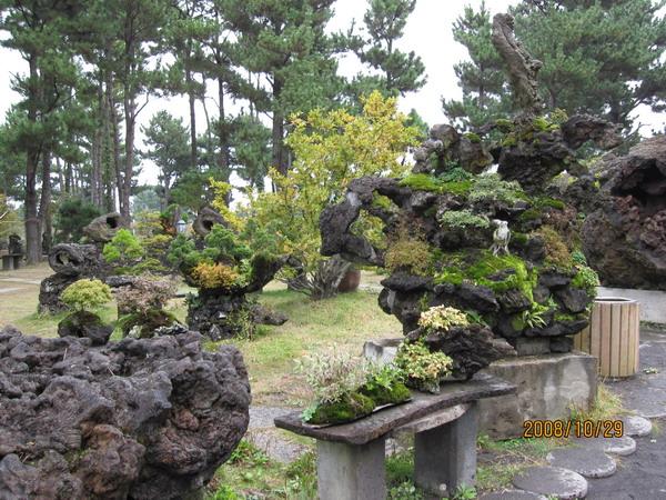 033_盆栽藝術苑1.JPG