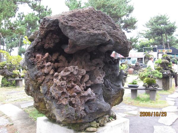 035_盆栽藝術苑1.JPG