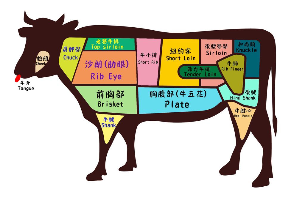 牛肉部位圖