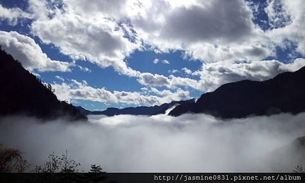 合歡山的雲海