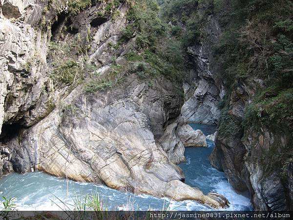 白楊步道峽谷溪流 (3)
