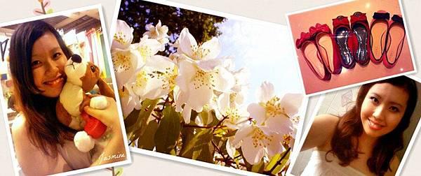 jasmine-flowers_副本