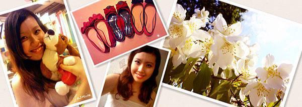 jasmine-flowers_副本1