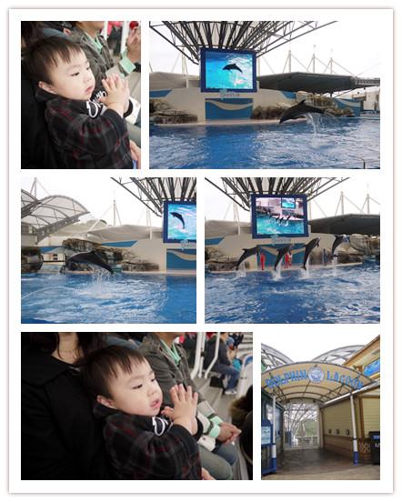 2011海洋公園 (56)海豚秀.jpg