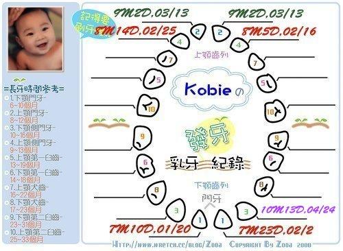 Kobie發芽紀錄第七顆.jpg