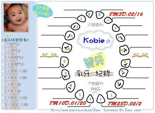 Kobie發芽紀錄第三顆.jpg