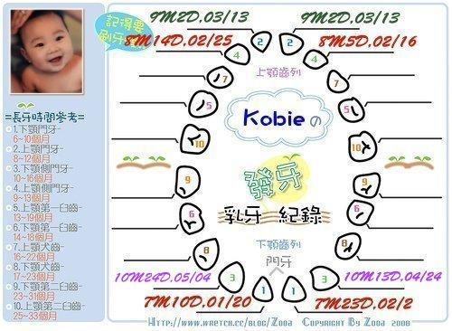 Kobie發芽紀錄第八顆.jpg