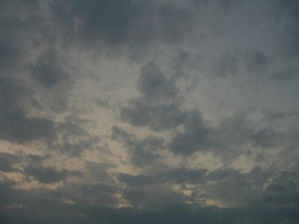 060304-1806 彰化,百果山