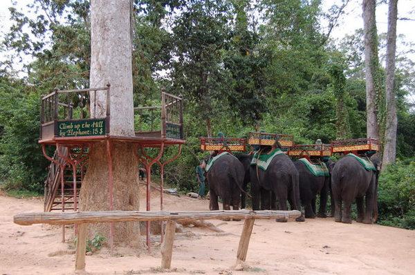 上巴肯山Phnom Bakheng有兩種方式