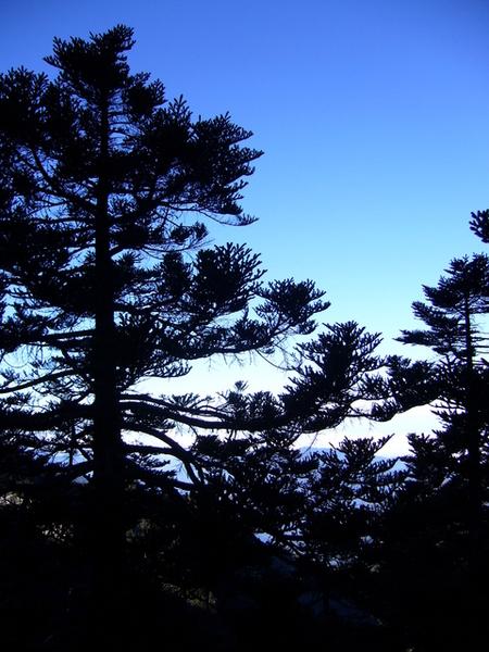 今天天空很藍