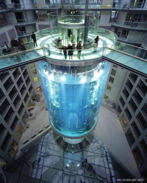 aquadom_ascensor2.jpg