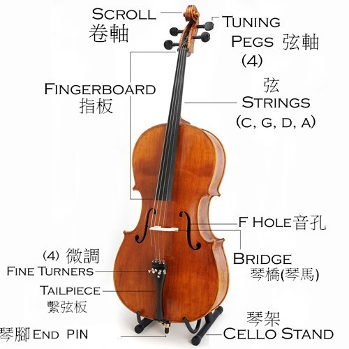 Cello-Description.jpg