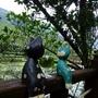 欣綠農園-05