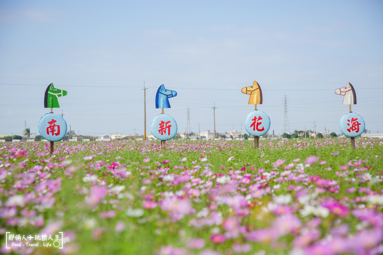 花海-4.jpg