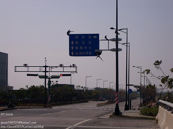 路標.JPG