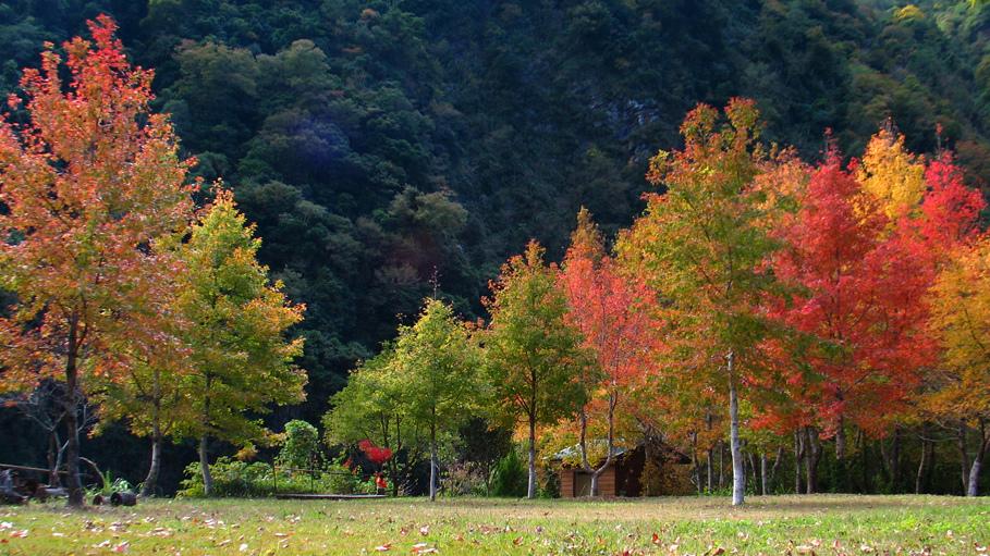 尖石秋景.jpg