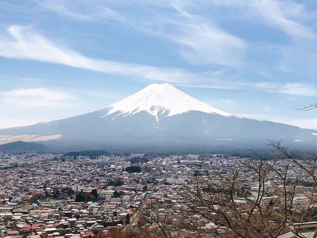 東京自由行 (19).jpg