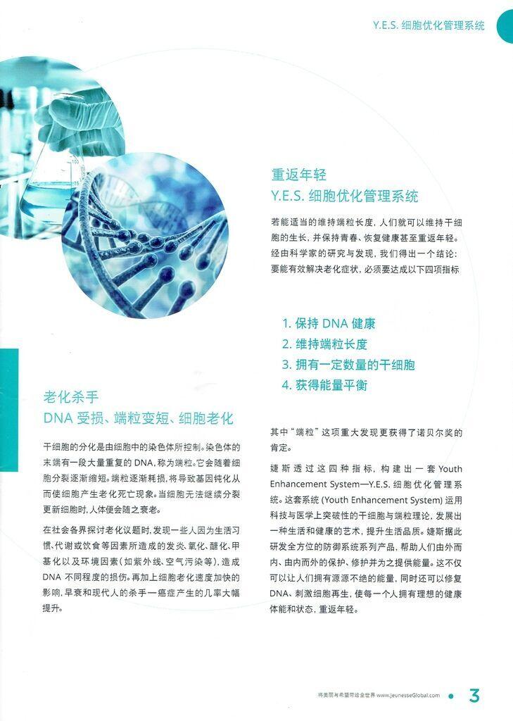JS-Y.E.S.細胞優化管理系統-2jpeg.jpeg