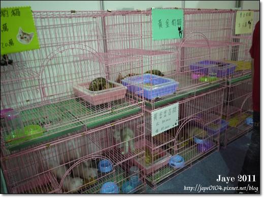 2011寵物展 (10).JPG