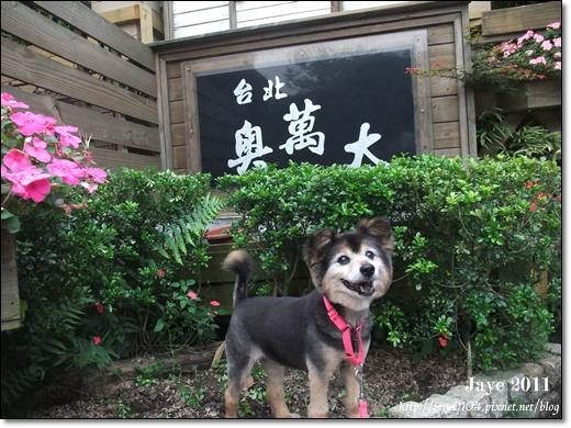 台北奧萬大 (3).jpg