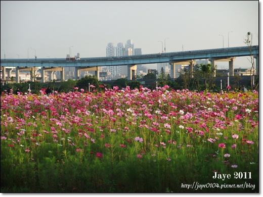 幸福水漾公園 (4).jpg