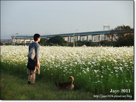 幸福水漾公園 (10).jpg