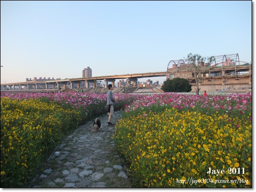 幸福水漾公園 (11).jpg