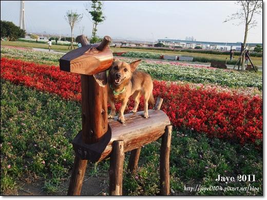 幸福水漾公園 (14).jpg