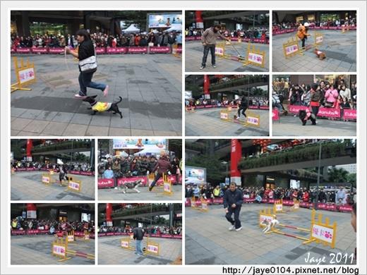 2011寵物嘉年華 (10).jpg